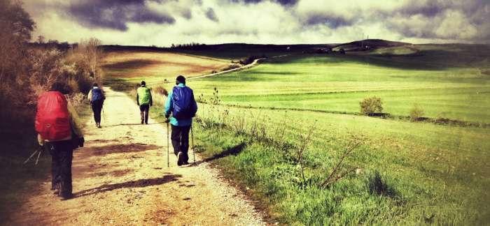 Ecosistemas y naturaleza en el Camino de Santiago
