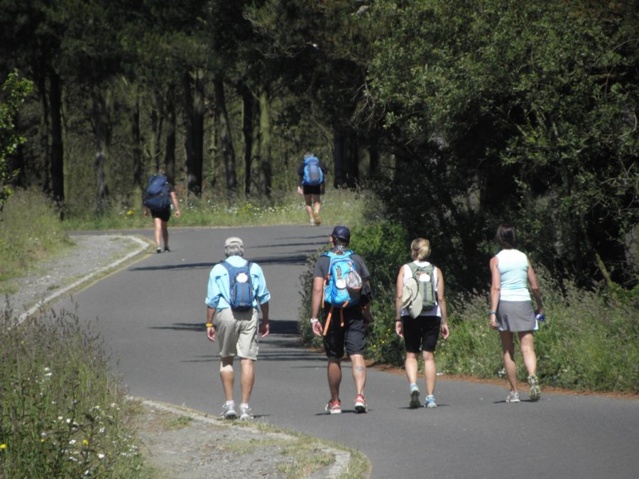 Camino de Santiago desde Sarria de lujo