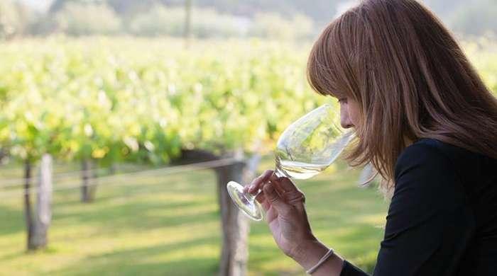 Descubre las rutas del vino en Galicia
