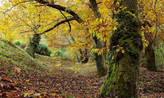 Los senderistas reaunudan sus rutas por la sierra de O Courel en Otoño.