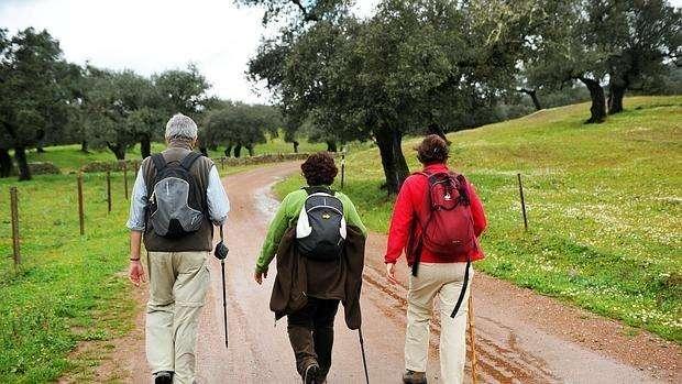 Consejos para las personas mayores que desean hacer el Camino de Santiago.