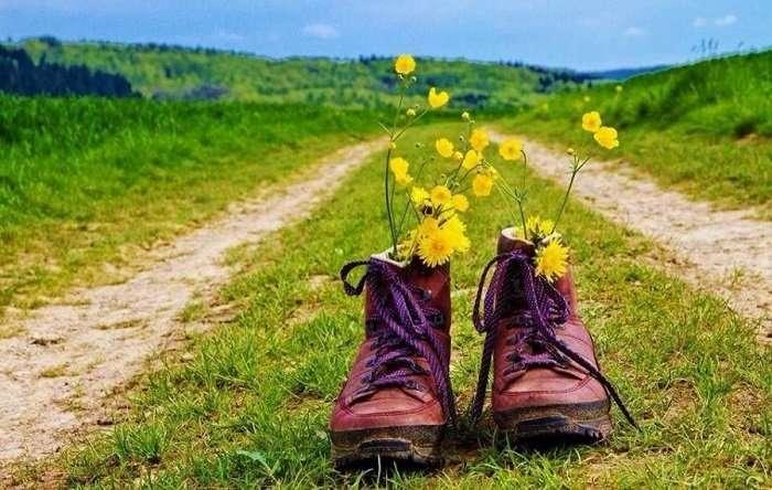 ¿Quieres hacer el Camino de Santiago por tu cuenta? Descubre nuestro tour independiente «Camino corto Free».
