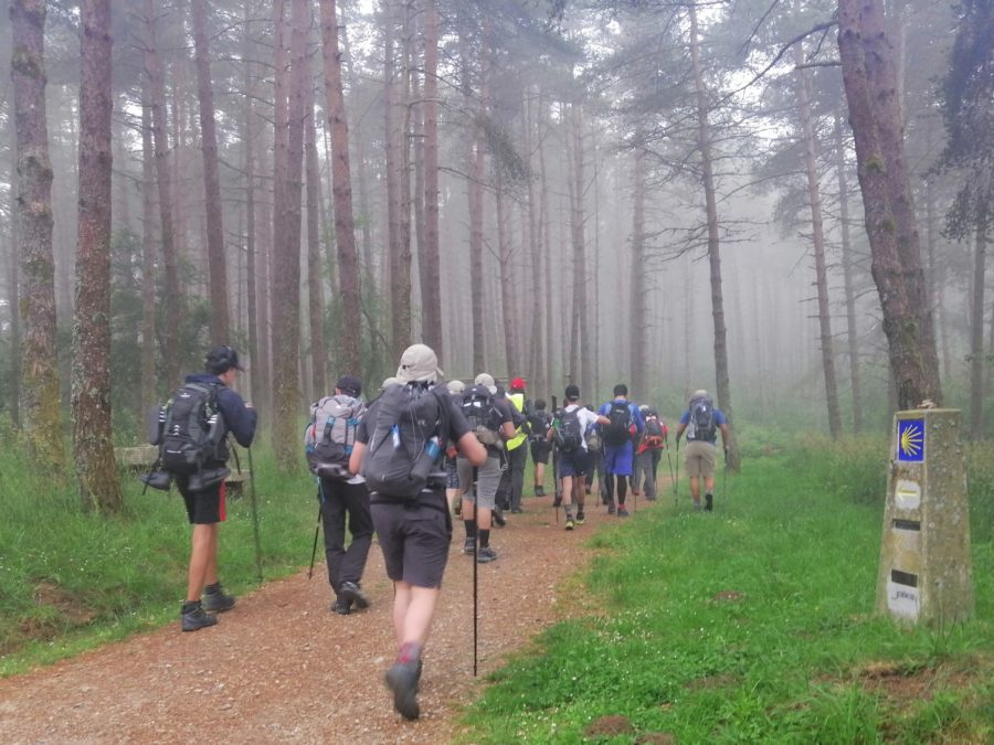 Camino Primitivo desde Lugo (independiente) 100 km 7 días y 6 noches .- desde 190€
