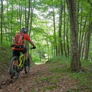 Últimos 300 km Camino Frances en Bicicleta «Guiado» 300 Km. 7 días 6 noches 1.450€